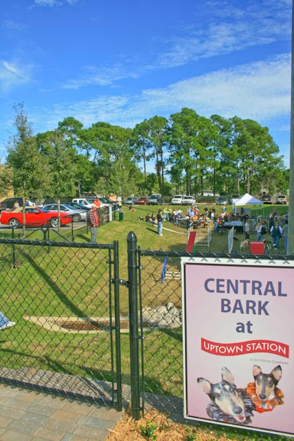 The only off-leash park in Fort Walton Beach